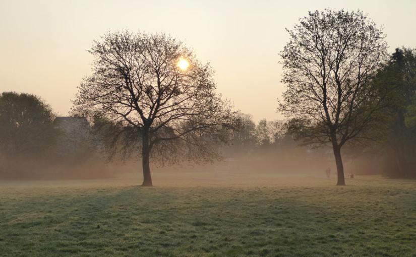 Morgens: Es ist doch noch ein wenig Winter