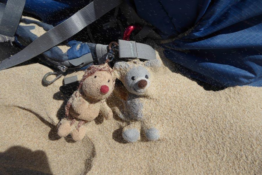 fast vom Sandsturm verschüttete Wandergefährten