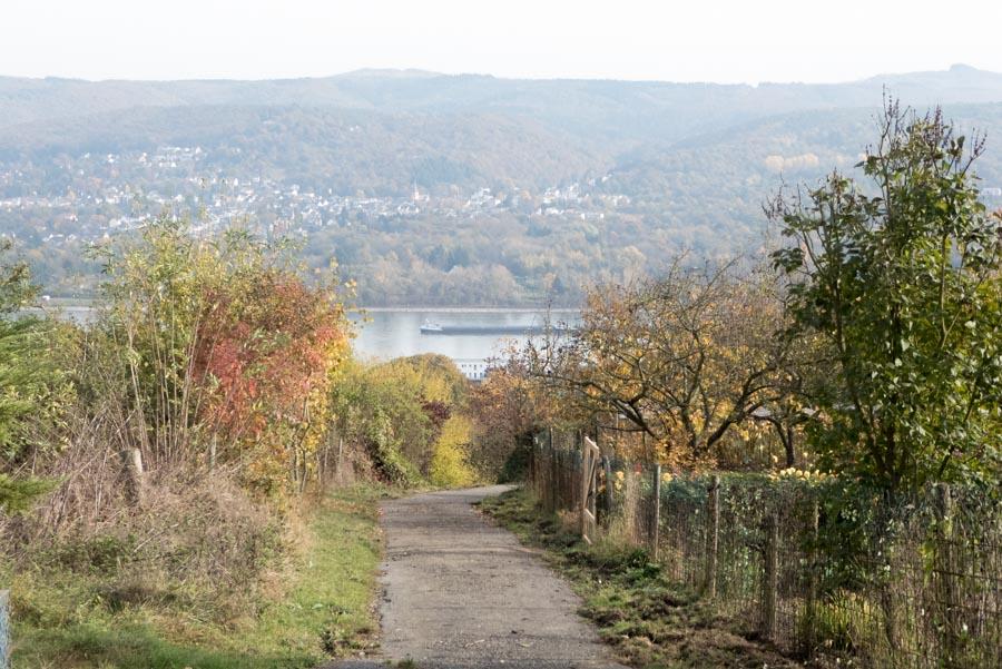Rhein bei Oberwinter