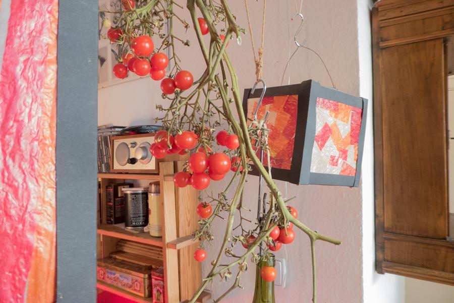 Tomaten und eine Laterne