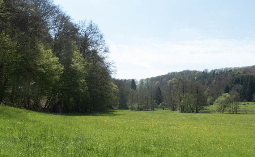 Bergischer Streifzug Nummer 19: Der Kräuterweg