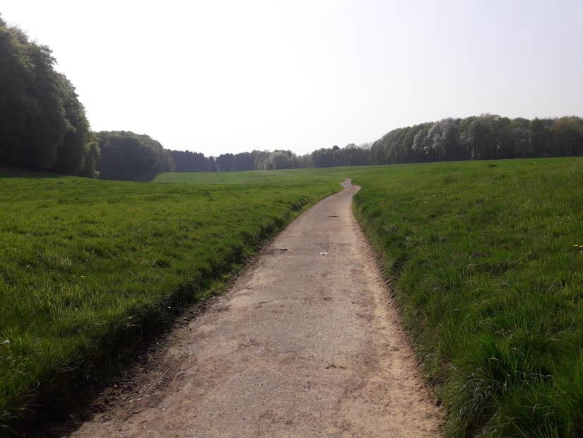 Teerweg durch die Wiesen