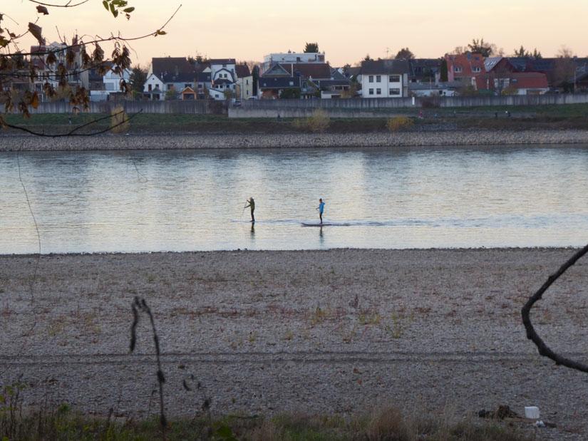 Rheinstrand, Rest-Rhein, Stand-Up-Paddler und gegenüber Sürth