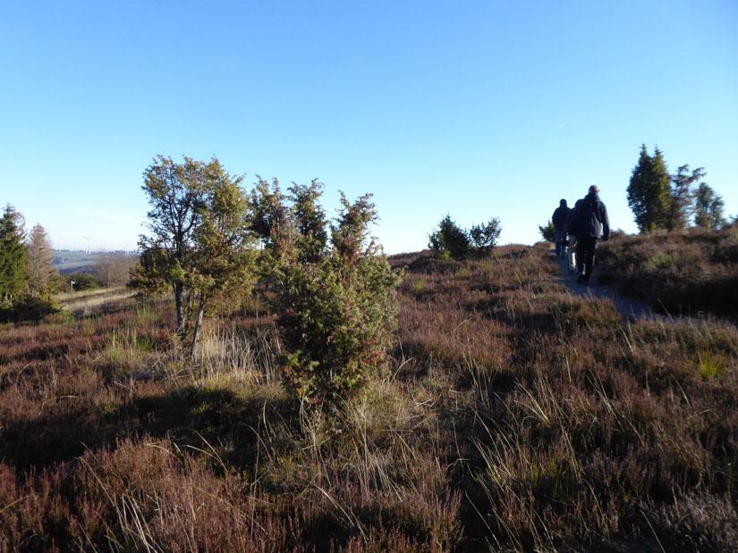 So sieht die Heide im Winter aus